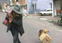 Humilde anciano con su mascota peru